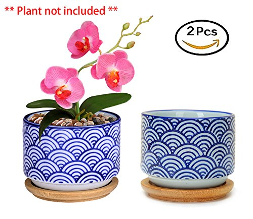 Flowerpot+Wooden Pot Tray Japanese Style Wave Pattern Ceramic Garden Pots Succulent Planter Blue White Flower Po (2-PCS, Wave Blue) - Bamboo Flower Stand