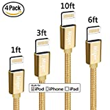 Miger Lightning Cable 4Pack 1Ft/3Ft/6Ft/10Ft Nylon Braided Apple Certified - Lightning Cables for iPhone X / 8 / 8 Plus / 7 / 7 Plus / 6 / 6s Plus / 5s / 5, iPad mini / 4 / 3 / 2, iPad Pro Air 2(Gold)