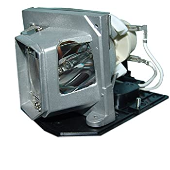 STAR-LAMP BL-FP230I Replacement Lamp with Housing for OPTOMA HD33//HD3300 Projectors