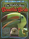 The World's Most Beautiful Birds, Annie Buckley, 1592968643