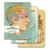 Cavallini Papers 4 by 5.5-Inch Notebooks, Mini, Curiosities, Set of 3
