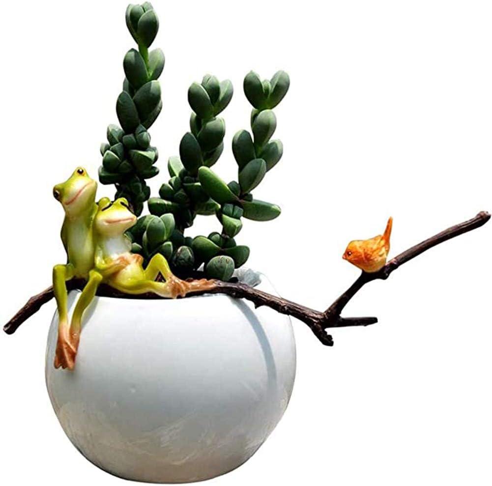Luoying Macetas, Animales Lindos, carnoso pequeñas macetas de Flores, balcón Decoración del Aula, Ranas, Flores