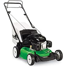 Lawn-Boy Rear Wheel Drive Self Propelled Gas Lawn Mower