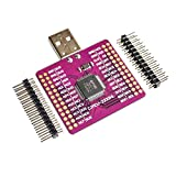 Mayata CJMCU-2232 FT2232HL USB Turn UART/FIFO/SPI/I2C/JTAG/RS232 Module External Memory