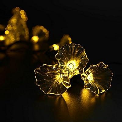 Elobeth Solar Powered LED Christmas Lights 20 LED Morning Glory String Lights Gardens Party Decoration