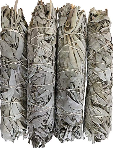 Oxley Health Extra Large California White Sage Smudge Sticks, 4 Huge Reusable Wands (Large Sage)