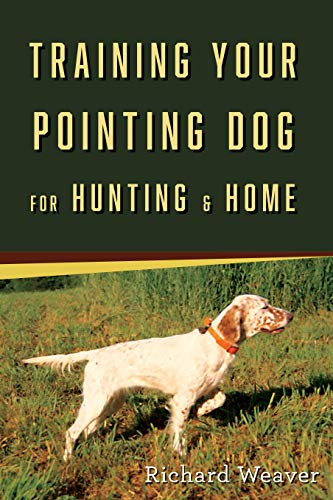 Training Your Pointing Dog for Hunting & Home (Best Pointing Dog Breeds)