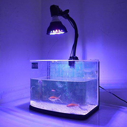 12 aquarium light bulb - 2