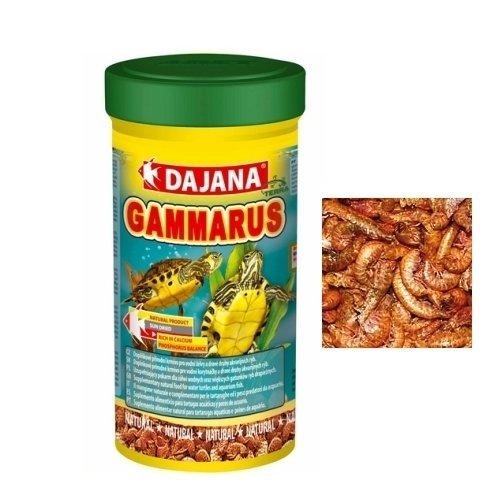 Dajana gammarus gamberetti essiccati per tartarughe for Terrario per tartarughe acquatiche