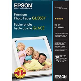Epson Premium Photo Paper GLOSSY (11x17 Inches, 20 Sheets) (S041290),White