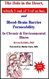 img - for The Hole in the Heart, Which 1 Out of 3 of Us Has: And Blood-Brain Barrier Permeability in Chronic & Environmental Illness by Steven, Ph.d Rochlitz (2013-01-06) book / textbook / text book
