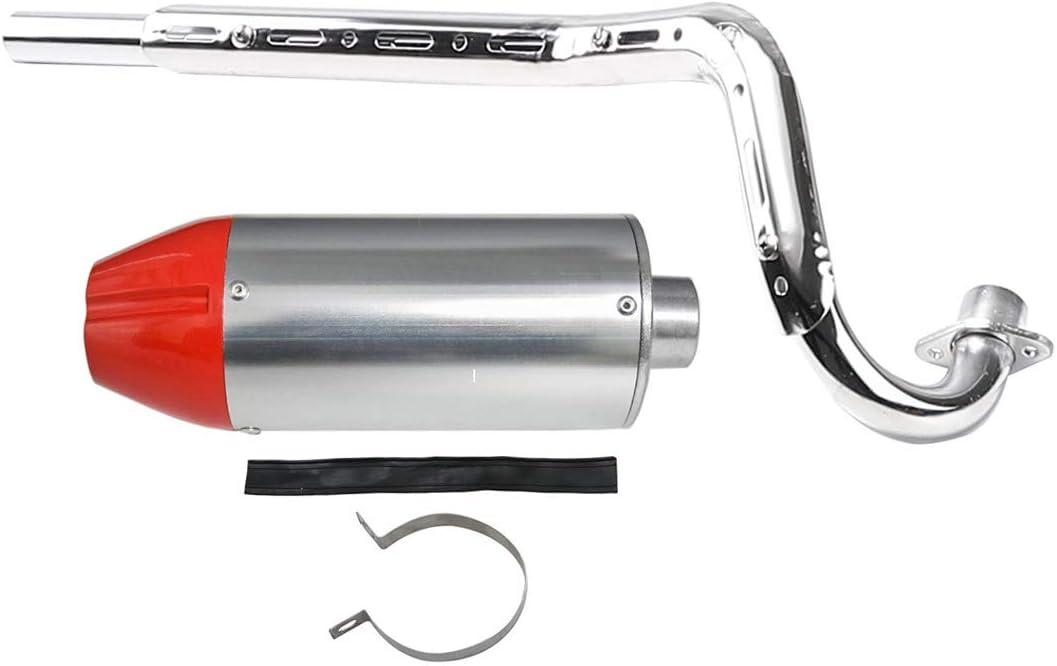 Silver Muffler Exhaust 28mm Pipe for CRF50 Apollo 110 125cc SDG SSR Dirt