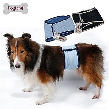 doglemi lavable macho sanitarias perro pañales macho perro pantalla, tamaño grande) macho perro pantalones