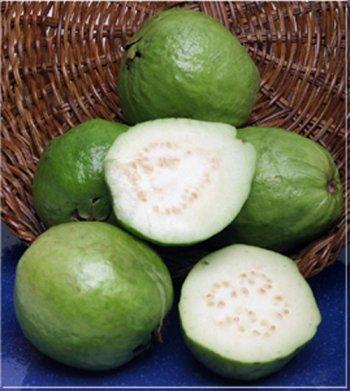 Melissa's Fresh Guavas (3 Lbs.) by Melissa's (Image #1)