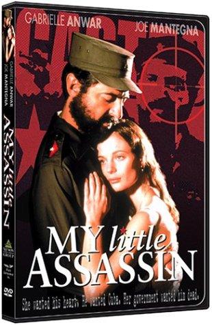 My Little Assassin -