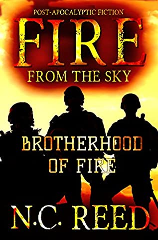 Fire From the Sky: Brotherhood of Fire - Reed & Barton Airplane