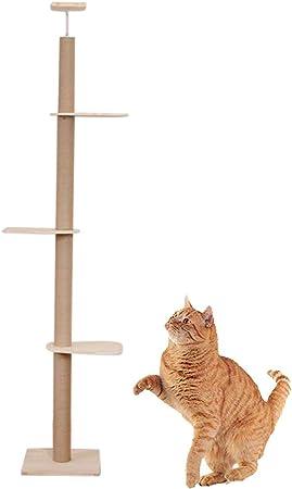 WAFOR Accesorios De Gatos del Gato con Poste Rascador Centro De Actividades Adecuado para Techos De 240 A 270 Cm De Altura (Mida Su Techo) ÁRbol Rascador De La Actividad del Gato: