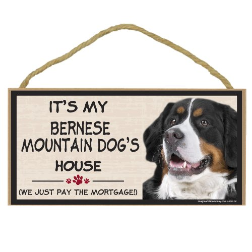 Imagine This Wood Breed Decorative Mortgage Sign, Bernese Mountain Dog