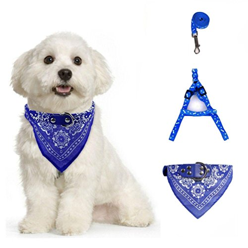Harnesses Leash Traction Kit Bandana Scarf Leather Collar Harness Set (Blue) (Standard Puppy Kit)