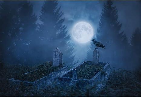 Yongfoto 3x2m Fotografie Hintergrund Halloween Nacht Kamera