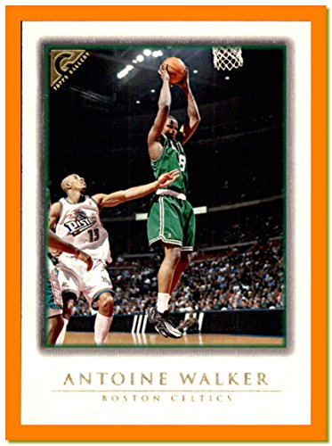 1999-00 Topps Gallery #77 Antoine Walker BOSTON CELTICS KENTUCKY WILDCATS