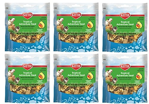 (6 Pack) Kaytee Fiesta Tropical Adventure Treat Blends for Small Animals, 8-Ounce each