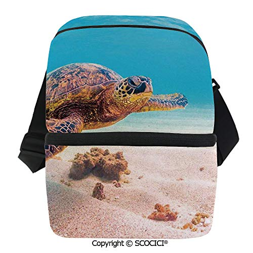 (SCOCICI Collapsible Cooler Bag Hawaiian Green Sea Turtle Cruises in Warm Waters of The Pacific Ocean Photo Insulated Soft Lunch Leakproof Cooler Bag for Camping,Picnic,BBQ )