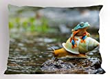 Ambesonne Funny Pillow Sham, Cute Colorful Frog Above The Snail Riverscape Water Rock Mollusks Amphibian Animals, Decorative Standard Queen Size Printed Pillowcase, 30 X 20 inches, Multicolor