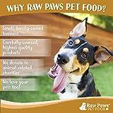 Raw Paws Pet Raw Frozen Dog Food & Cat