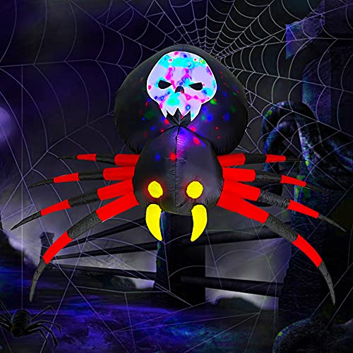 Big beautiful spider