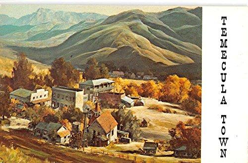 Temecula Town California Birdseye View Of City Vintage Postcard K94310