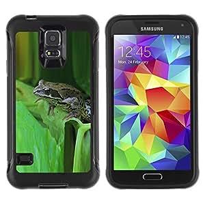 All-Round híbrido de goma duro caso cubierta protectora Accesorio compatible con Samsung Galaxy S5–green toad forest leaf tropical