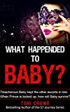 Download What Happened To Baby?: Treacherous Baby kept the other escorts in line. When Prince is locked up, how will Baby survive? ($7 My Journey Series Book 6) in PDF ePUB Free Online