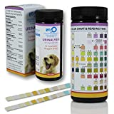 10-in-1 Dog & Cat Urine Test Strip 100ct | Vet-10