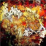 New Dark Age by Karet, Djam (2001-05-22)