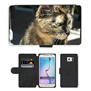 Hot Style Cell Phone Card Slot PU Leather Wallet Case // M00110786 Cat Face Cat'S Eyes Animals Animal // Samsung Galaxy S6 (Not Fits S6 EDGE)