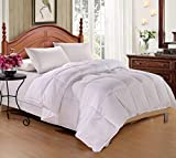 Alternative Comforter - DelbouTree Luxury White Goose Down Alternative Comforter, Overfilled Year Round Use Comforter with Corner Tab (Queen 88