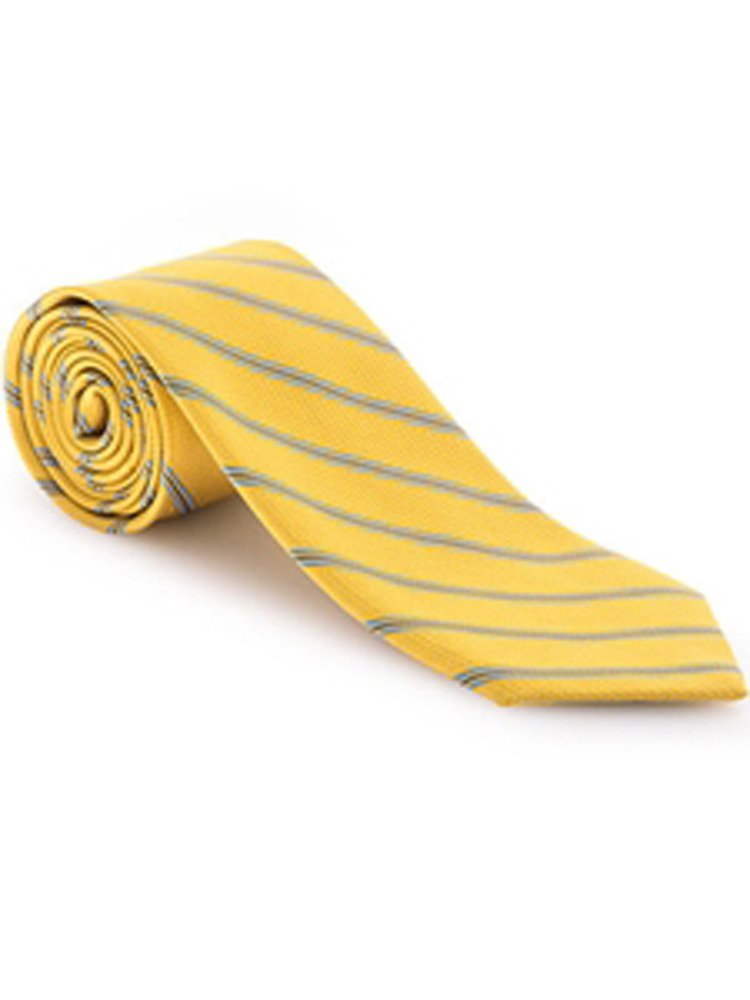 Robert Talbott Gold Corporate Best of Class Tie