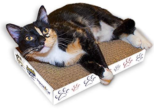 imperial cat scratch - 8