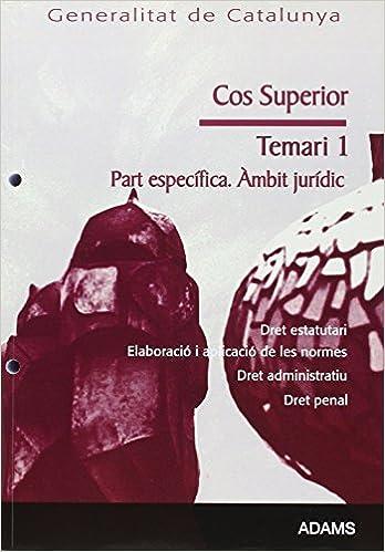 Amazon Com Cos Superior Generalitat De Catalunya àmbit Jurídic Dret Estatutari Elaboració I Aplicació De Les Normes Dret Administratiu Dret Penal Temari De La Parte Específica 1 Catalan Edition 9788499430713 Books