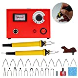 TOPCHANCES Wood Pyrography Craft Tool Kit,Digital Multifunction Pyrography Machine 50W Variable Temperature Control Wooden Crafts Set with 2 Pcs Pyrography Pen and 20 Pcs Pyrography Tips,110V US Plu