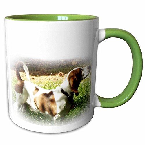 3dRose Renderly Yours Dogs - Basset Hound - 15oz Two-Tone Green Mug (mug_185360_12)