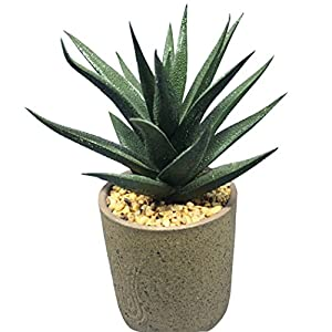 JUSTDOLIFE Artificial Succulent Home Decoration Plant Lotus Cactus Aloe Plastic Artificial Potted Plant 13