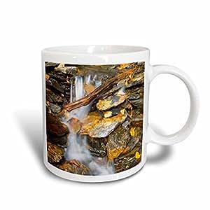 Danita Delimont - Appalachia - Tennessee, Great Smoky Mountains, stream along Alum Cave Bluffs trail - 11oz Mug (mug_231602_1)