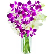 KaBloom Exotic Opal Orchid Bouquet of 5 White Dendrobium Orchids & 5 Purple Dendrobium Orchids from Thailand with Vase