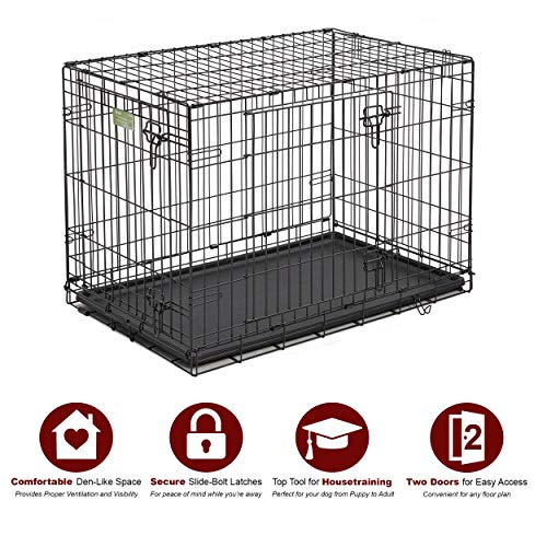 Dog Crate | MidWest ICrate 36 Inches Double Door Folding Metal Dog Crate w/ Divider Panel, Floor Protecting Feet & Leak Proof Dog Tray | Intermediate Dog Breed, Black