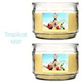 Hosley Set of 2 Tropical Mist Highly Scented, 2 Wick, 10 Oz wax, Jar Candle.