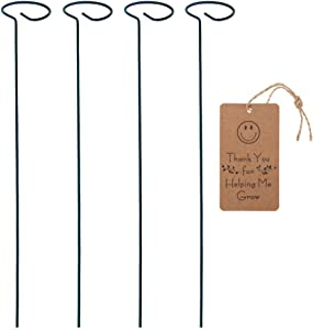 Newflager 4 Pack Plant Stake Support, Garden Plant Stakes for Amaryllis Orchid Lily Rose Tomatoes (15.9 inch)