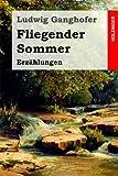 Fliegender Sommer: Erzählungen