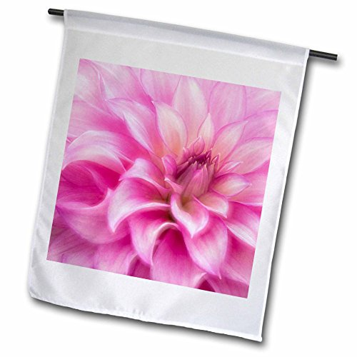 - 3dRose Danita Delimont - Flowers - USA, Colorado, Longmont. Double exposure of dahlia flower. - 18 x 27 inch Garden Flag (fl_278739_2)